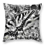 Zebra Wings Throw Pillow