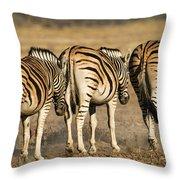Zebras Three Throw Pillow