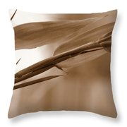 Zen Flow Throw Pillow