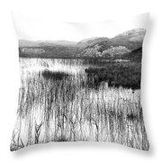 Zen Pond In Ireland Throw Pillow