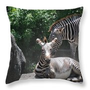 Zerbas Throw Pillow