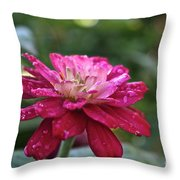 Zinnia Quenched Throw Pillow