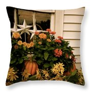 Zinnias In The Window Box  Throw Pillow