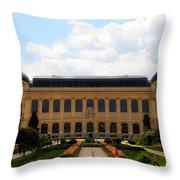 Zoology Building Paris Throw Pillow