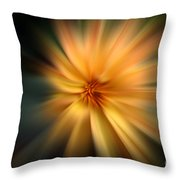 Zoomed Throw Pillow