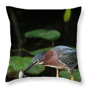 A Green Heron With Fish Throw Pillow