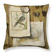 A Trompe L'oeil With Magnifying Glass Throw Pillow