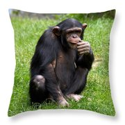 About The Reason Of Life Throw Pillow