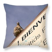 African Collared Dove 2 Throw Pillow