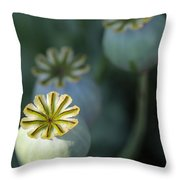 After The Flower 3 Throw Pillow