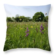 Ancient Hay Meadow Throw Pillow