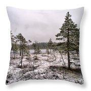 April Snow 1 Throw Pillow