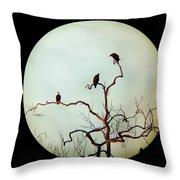 Bald Eagle And Two Juveniles Throw Pillow