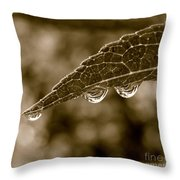 Beautiful Raindrops On A Leaf Throw Pillow