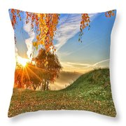 Birches At Sunrise  Throw Pillow