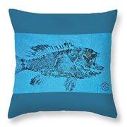 Black Sea Bass - Rockfish - Grouper Throw Pillow