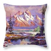 Breaking Winter Sunlight Throw Pillow