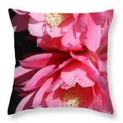 Brightness Throw Pillow
