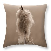 Broadleaf Cattail 2 Throw Pillow