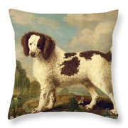 Brown And White Norfolk Or Water Spaniel Throw Pillow by George Stubbs