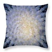 Cactus Nr1 Throw Pillow