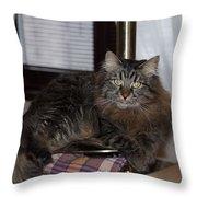 Cat On The Bar Throw Pillow