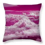 Throw Pillow by Cindy Greenstein
