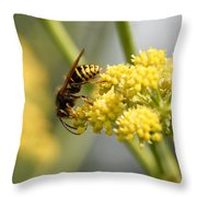 Common Wasp Throw Pillow
