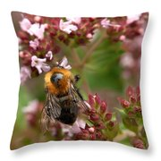 Cuckoo Bumblebee 2 Throw Pillow