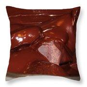 Dandelion Chocolate Throw Pillow
