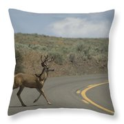 Deer 1 Throw Pillow