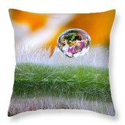 Drop Of Rain On The Pod Lupine Throw Pillow