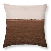 Dunes Of Danmark 3 Throw Pillow