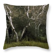 Dv Creek Trees Throw Pillow