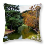 East Canal Throw Pillow