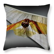 Eastern Amber Dragonfly 3d Throw Pillow