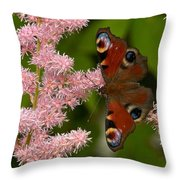 European Peacock Throw Pillow