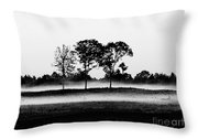 Evening Mist Black And White Throw Pillow