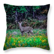 Evening Out Throw Pillow