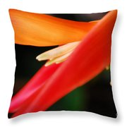 Fine Art - Bird Of Paradise Throw Pillow