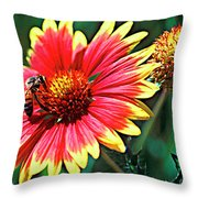 Firewheel Throw Pillow