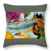 Friendly Company Of Rain Droplets On A Flower Cereal Throw Pillow