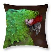 Great Green Macaw Ara Ambiguus Throw Pillow