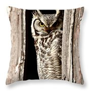 Great Horned Owl Perched In Barn Window Throw Pillow by Mark Duffy