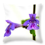 Ground-ivy Throw Pillow