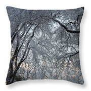 Ice Storm On The 6th II Throw Pillow