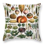 Illustration Of Vegetable Varieties Throw Pillow