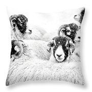 In Winters Grip Throw Pillow