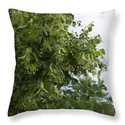 Keep Fresh Throw Pillow