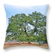 Land In The Hood Throw Pillow